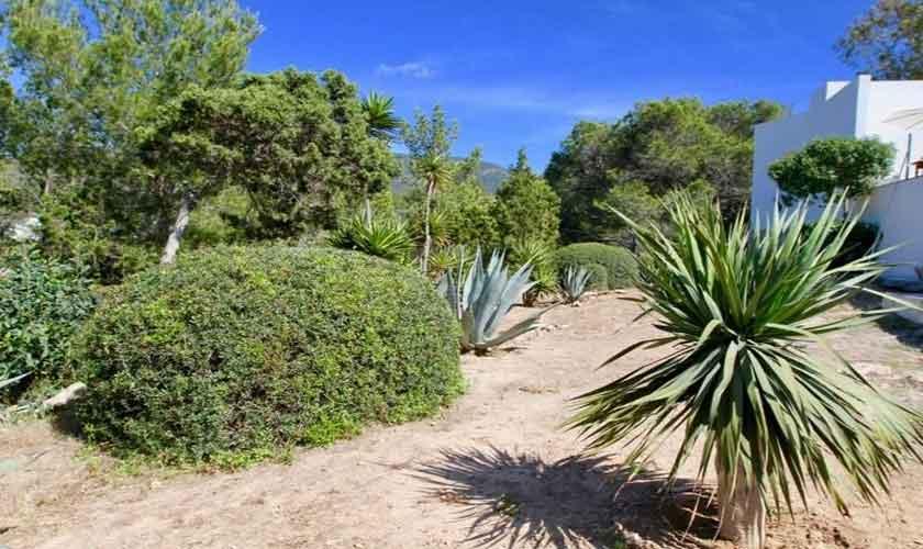 Landschaft Ferienvilla Ibiza IBZ 81