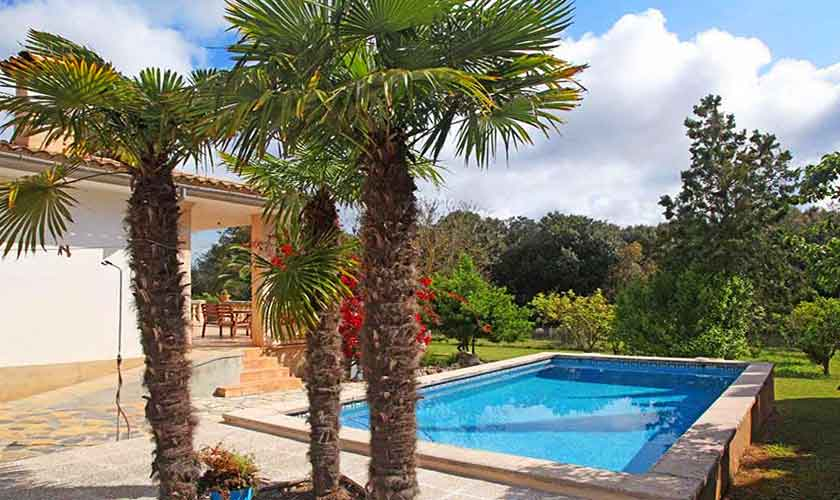 Pool und Palmen  Finca Mallorca 6 Personen PM 5424