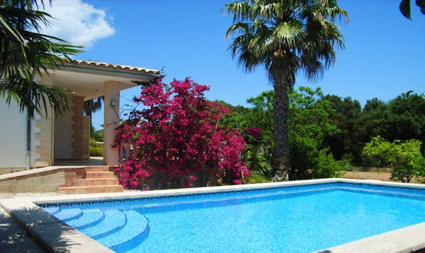 Pool und Finca Mallorca 6 Personen PM 5424