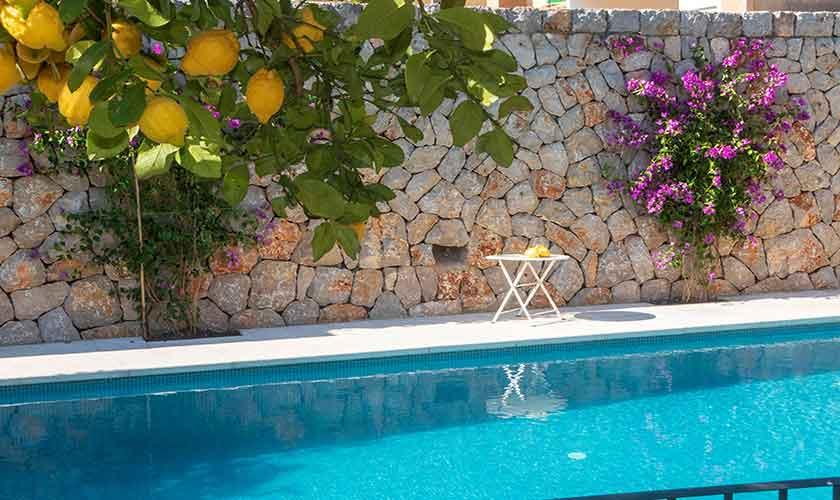 Pool Finca Mallorca PM 235