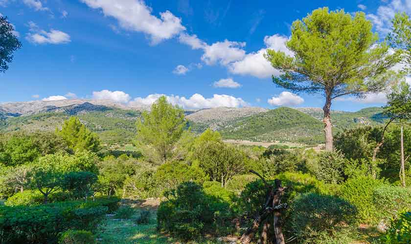 Landschaft Finca Mallorca Norden PM 3150