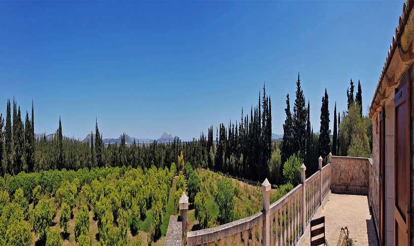 Blick in die Landschaft Finca Mallorca PM 3660