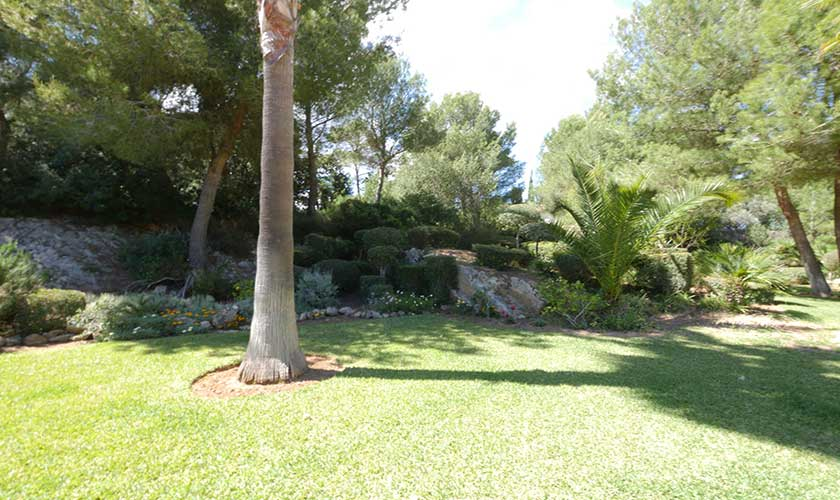 Garten Finca Mallorca Nordküste PM 3730