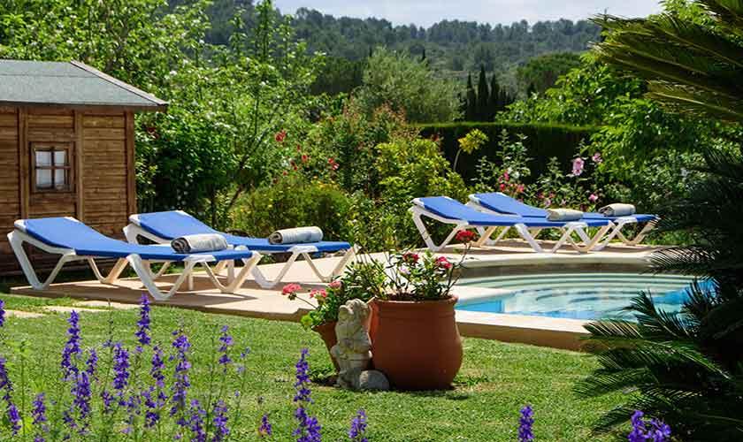 Pool und Liegen Finca Mallorca PM 3893
