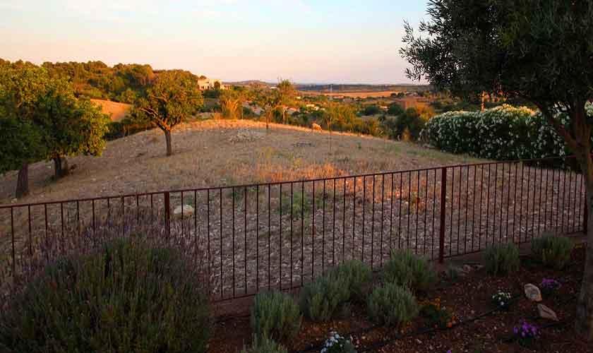 Blick in die Landschaft Finca Mallorca Pool PM 5208