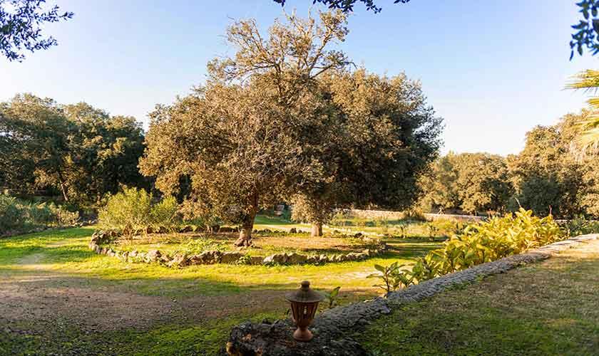 Garten Finca Mallorca Nordosten PM 5215
