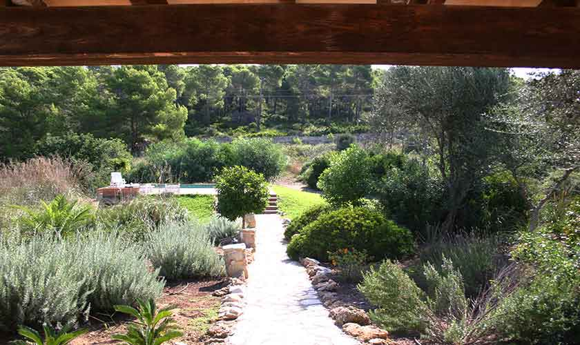 Garten Finca Mallorca PM 541