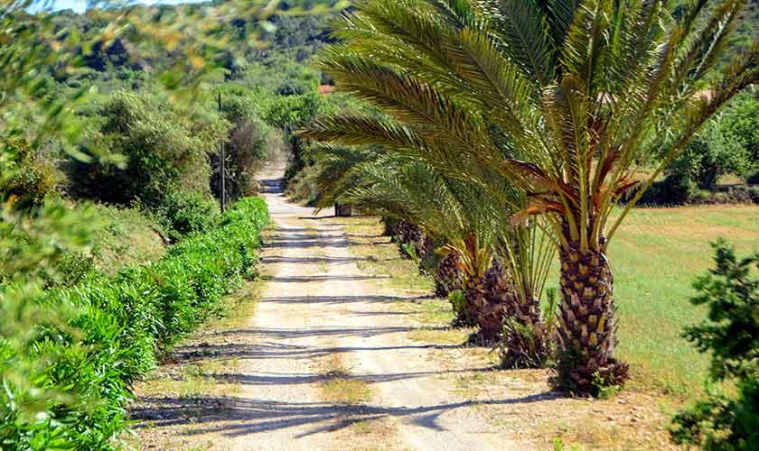 Einfahrt Finca Mallorca Südosten PM 6054