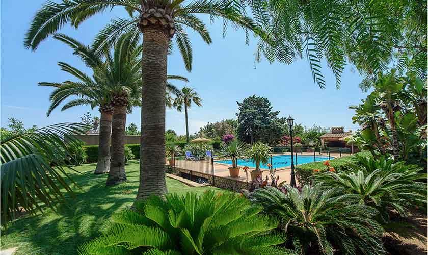 Pool und Palmen Finca Mallorca 10 Personen PM 6084