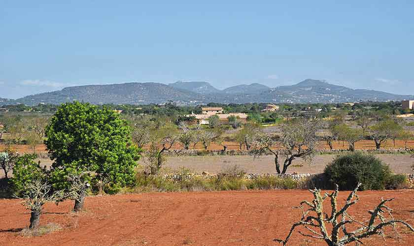 Blick in die Landschaft Finca Mallorca PM 6544