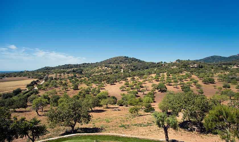 Blick von der Finca Mallorca 10 Personen PM 6553