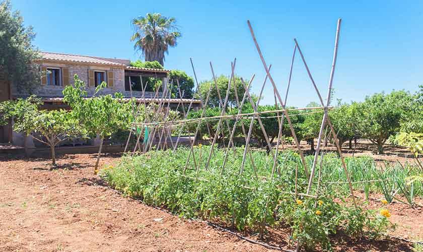 Garten Finca Mallorca 8 Personen PM 6558