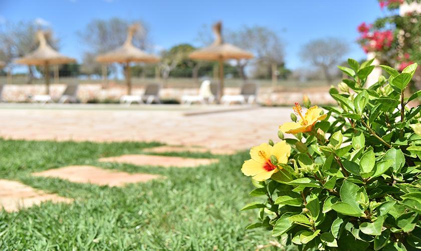 Garten Finca Mallorca 12 Personen PM 6560