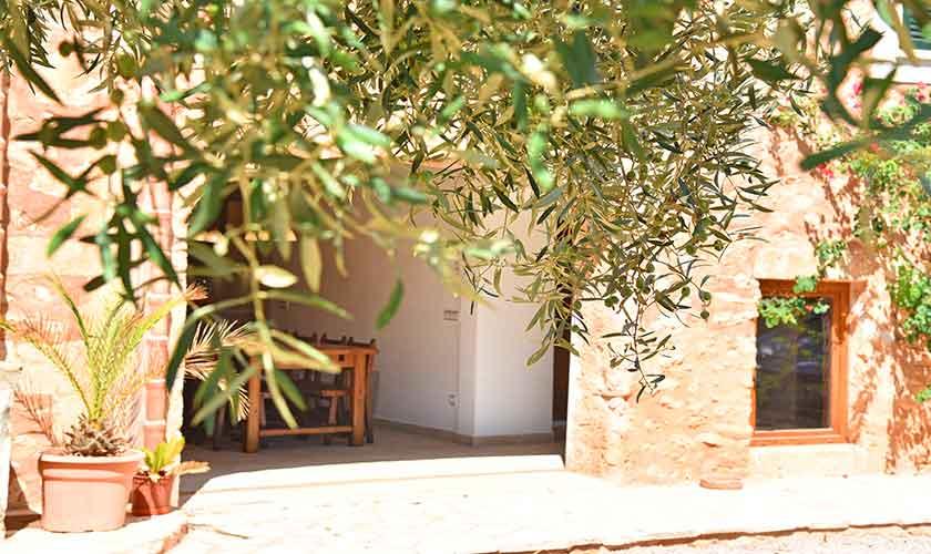 Olivenbaum Finca Mallorca 12 Personen PM 6560