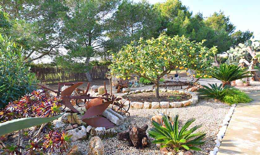 Garten Finca Mallorca Pool 6 Personen PM 6598