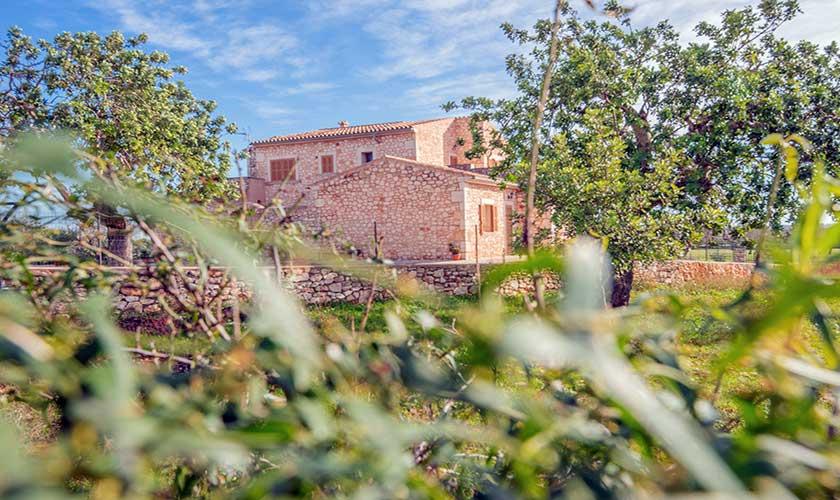 Blick auf die Finca Mallorca PM 662