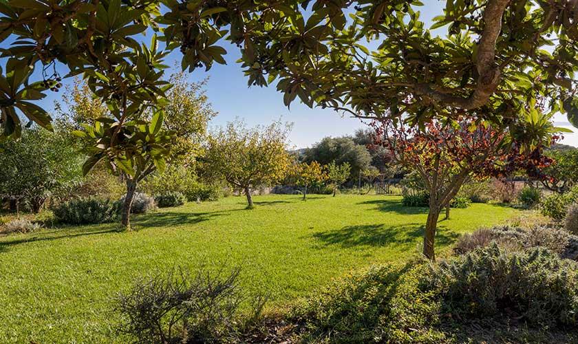 Garten Finca Mallorca PM 6630