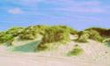 Duenen am Es Trenc Strand, Mallorca, Sueden