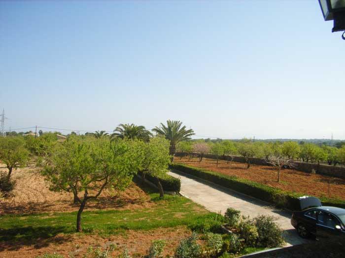 Landschaft Finca Mallorca mit Pool PM 410