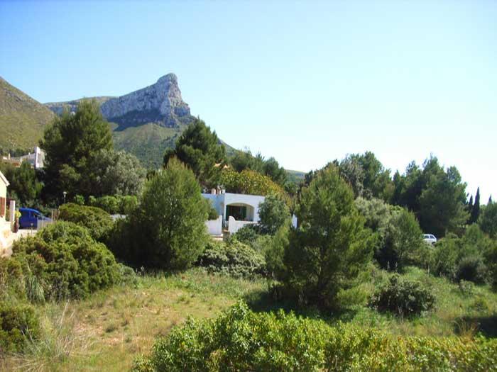 Landschaft Ferienhaus Mallorca mit Pool PM 446