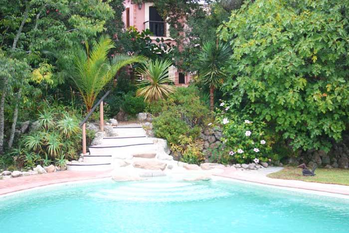 Poolblick 4 Finca Mallorca mit Pool PM 558