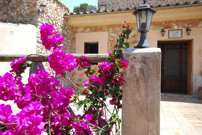 Blumen Finca Mallorca mit Pool für 8 Personen PM 135