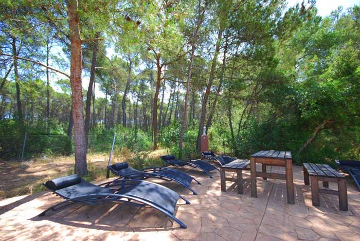 Pool und Liegen Finca Mallorca Südwesten PM 135