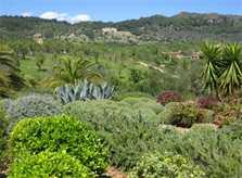Blick in die Landschaft Exklusives Ferienhaus Mallorca mit Pool und Service PM 530