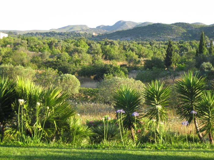 Blick in die Landschaft Exklusive Finca Mallorca mit Pool PM 530