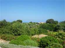 Blick von oben Finca Mallorca PM 538 Exklusive Finca 8 Personen Capdepera