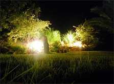 2 Garten bei Nacht Finca Mallorca PM 538 Exklusive Finca 8 Personen Capdepera