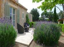 Garten Finca Mallorca mit Pool für 8 - 10 Personen PM 5397