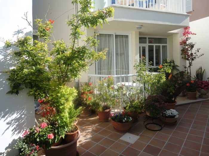 Blumen Innenhof Ferienwohnung Cala Ratjada 2 - 4 Personen PM 545 A
