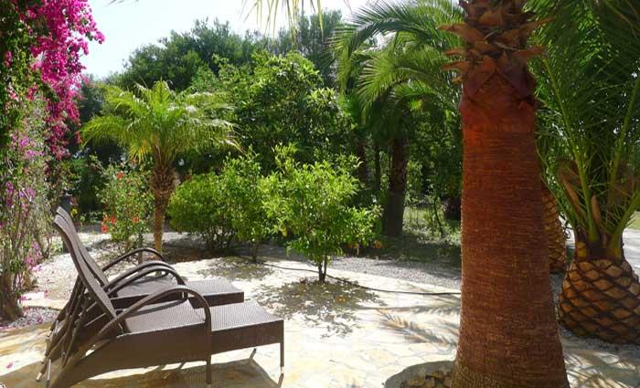 Garten Finca Mallorca mit Pool PM 5491