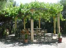 Garten 4 Finca Mallorca PM 5491