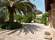Palme Finca Mallorca 8 Personen Pool Arta PM 569