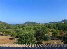 Blick in die Landschaft Finca Mallorca Pool 6 Personen PM 5921