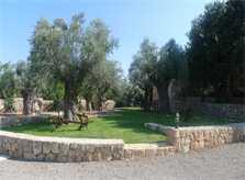 Wiese Finca Mallorca mit Pool PM 6022