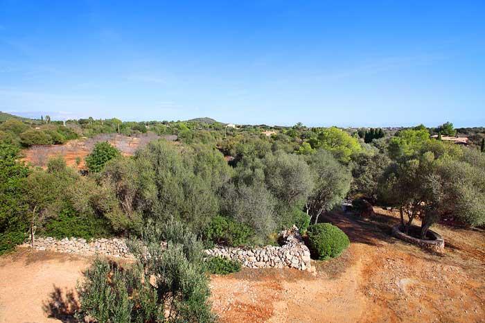 Blick auf die Landschaft Finca Mallorca PM 6093