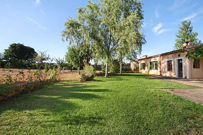Hintere Ansicht mit Rasen und Baumbestand Exklusive Natursteinfinca Mallorca mit Pool und Klimaanlage PM 6094