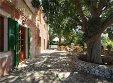 Schattige Terrasse mit altem Baumbestand Luxusfinca Mallorca mit Klimaanlage und Pool PM 6094