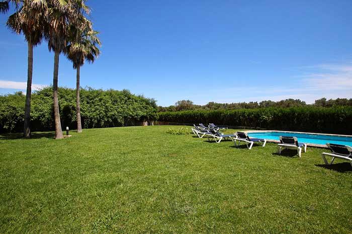 Garten mit Rasenfläche und Palmen Exklusive Finca Mallorca für 16 Personen PM 6094