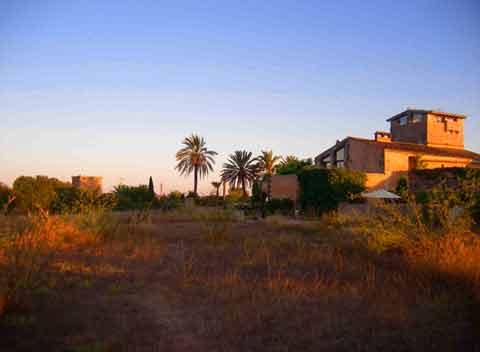 Finca im Abendlicht Ferienwohnung Mallorca 2 Personen PM 6151