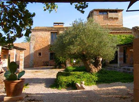 Blick auf die große Finca Ferienwohnung Mallorca 2 Personen PM 6152