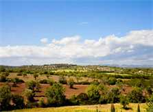 Blick in die Landschaft Finca Mallorca PM 626