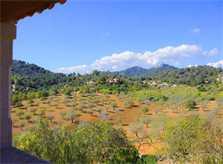 Blick von der Finca Mallorca mit Pool für 10 Personen PM 6553