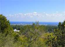 Blick von Finca Mallorca 10 Personen PM 6553