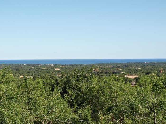 Blick zum Meer Finca Mallorca mit Pool für 12 Personen PM 658