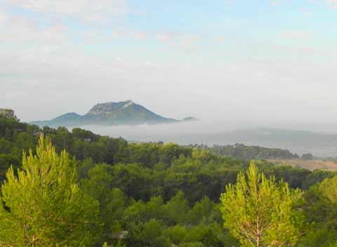 Morgenstimmung Panoramablick Komfortable Finca Mallorca mit Pool Südostküste Felanitx Manacor Portoclom PM 678