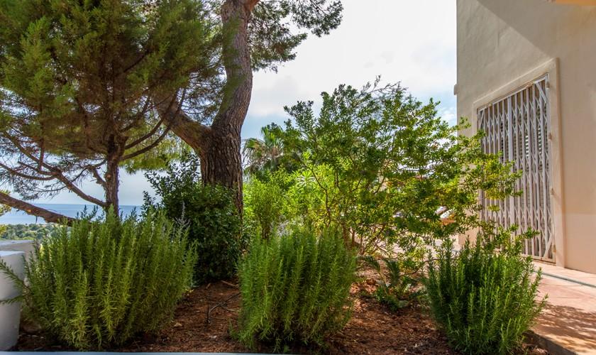 Garten Villa Ibiza Cala Tarida IBZ 17